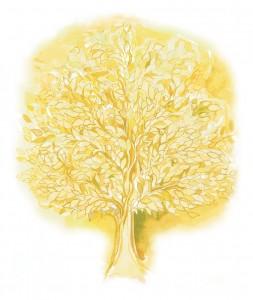 tree(Final1)