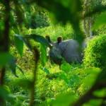 «محمية شيتوان الوطنية»