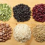 علم الحبوب وصناعتها