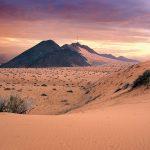 الصحراء لا تحتاج علاجاً